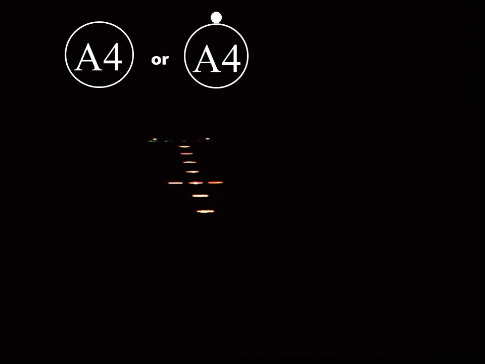 A4 A4 or Could be A4 or A4 dot depending on weather or not there are sequenced flashers 2