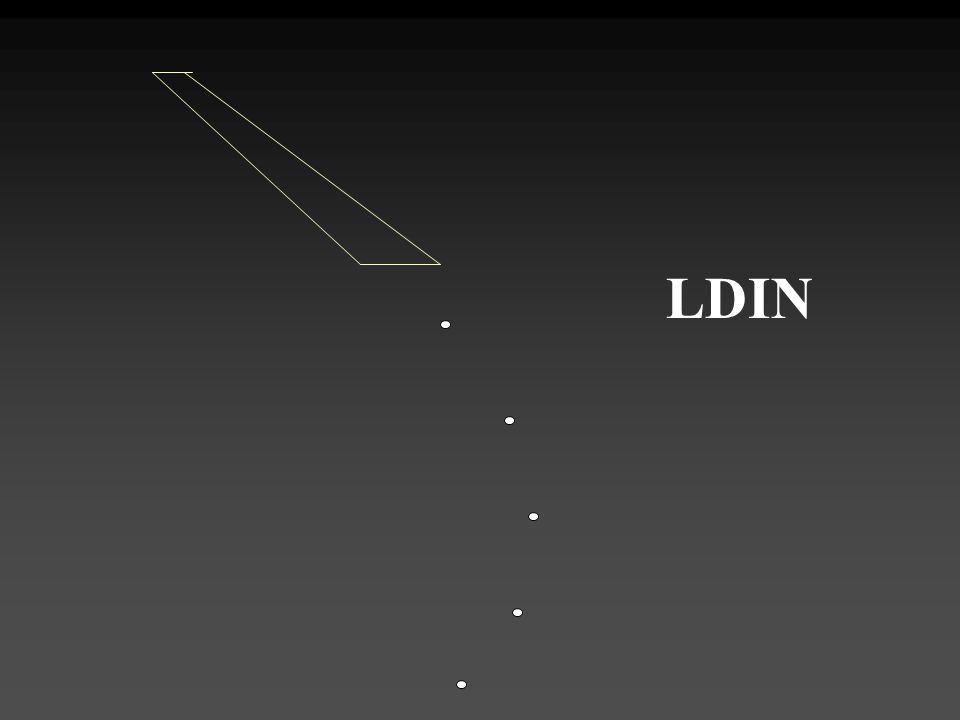 LDIN LDIN, Lead-In Lighting System.