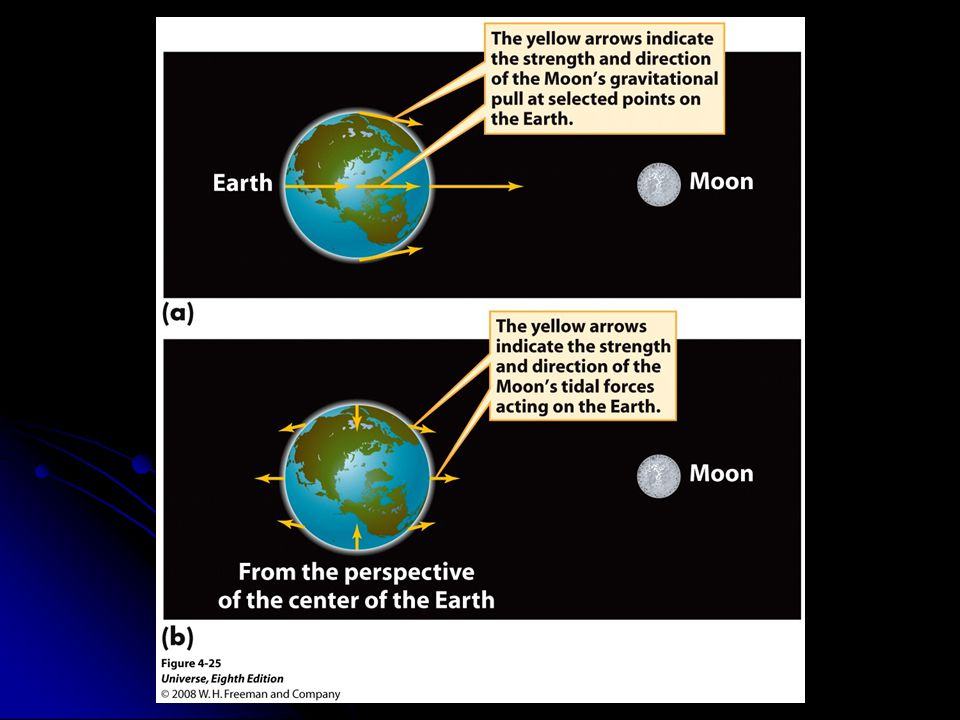 Figure 4-25 Tidal Forces on the Earth