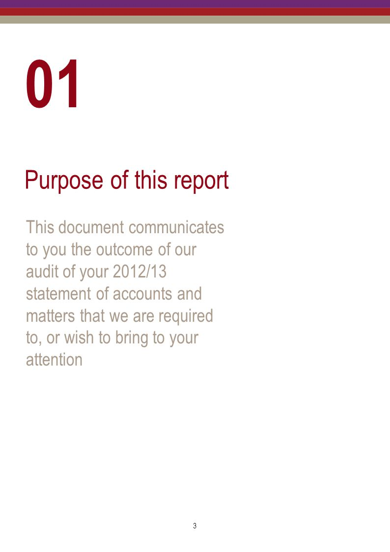 01 Purpose of this report.