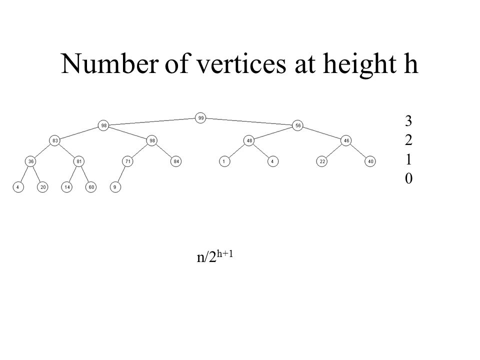 Number of vertices at height h
