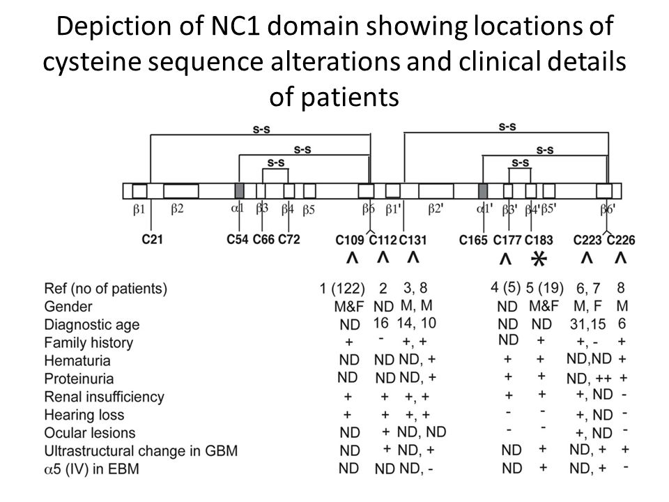 Depiction of NC1 domain showing locations of cysteine sequence alterations and clinical details of patients