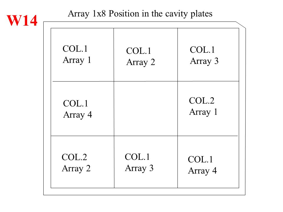 W14 Array 1x8 Position in the cavity plates COL.1 COL.1 COL.1 Array 1