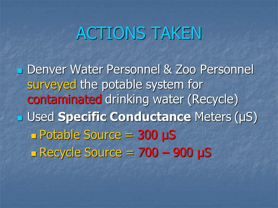 ACTIONS TAKEN Denver Water Personnel & Zoo Personnel surveyed the potable system for contaminated drinking water (Recycle)