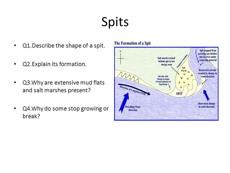 Spits Q1.Describe the shape of a spit. Q2.Explain its formation.