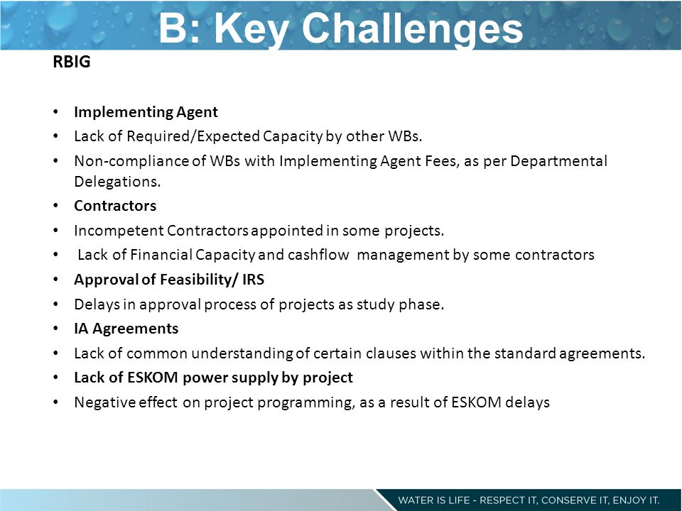 B: Key Challenges RBIG Implementing Agent