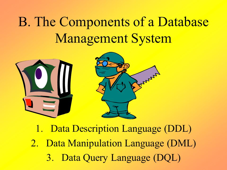 B. The Components of a Database Management System