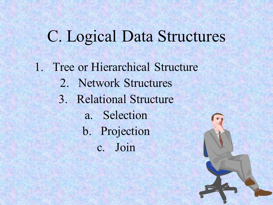 C. Logical Data Structures