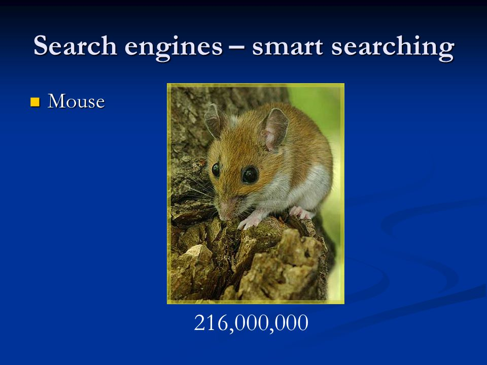 Search engines – smart searching