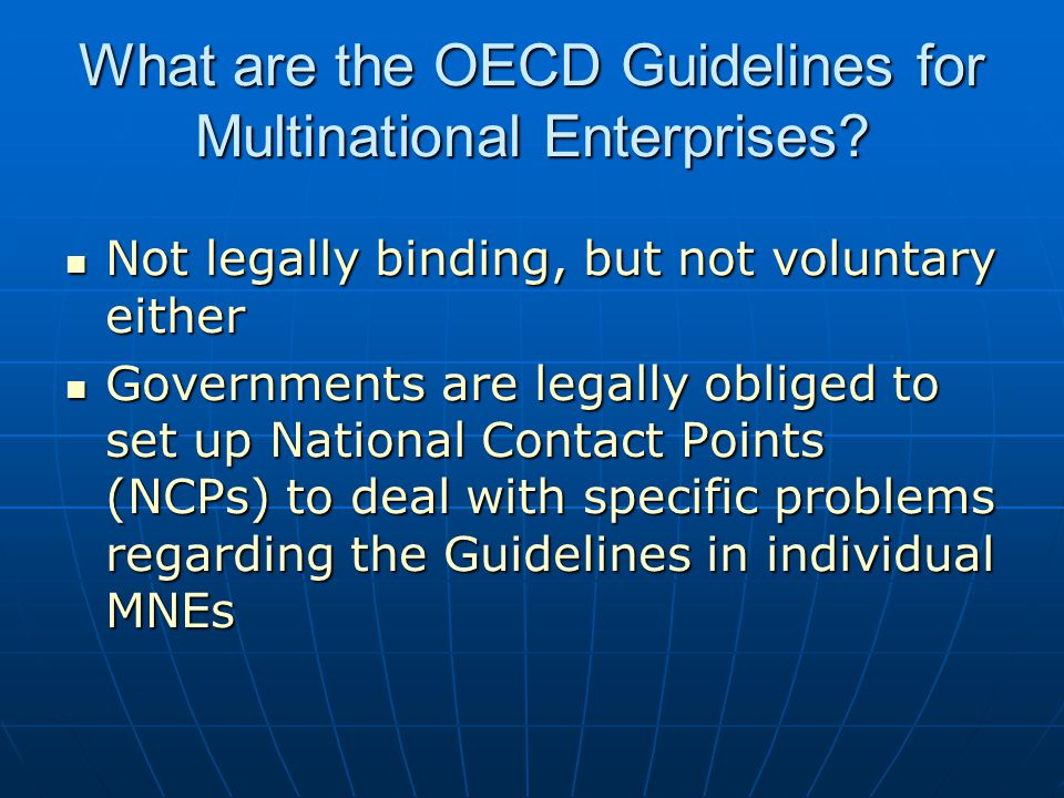 What are the OECD Guidelines for Multinational Enterprises