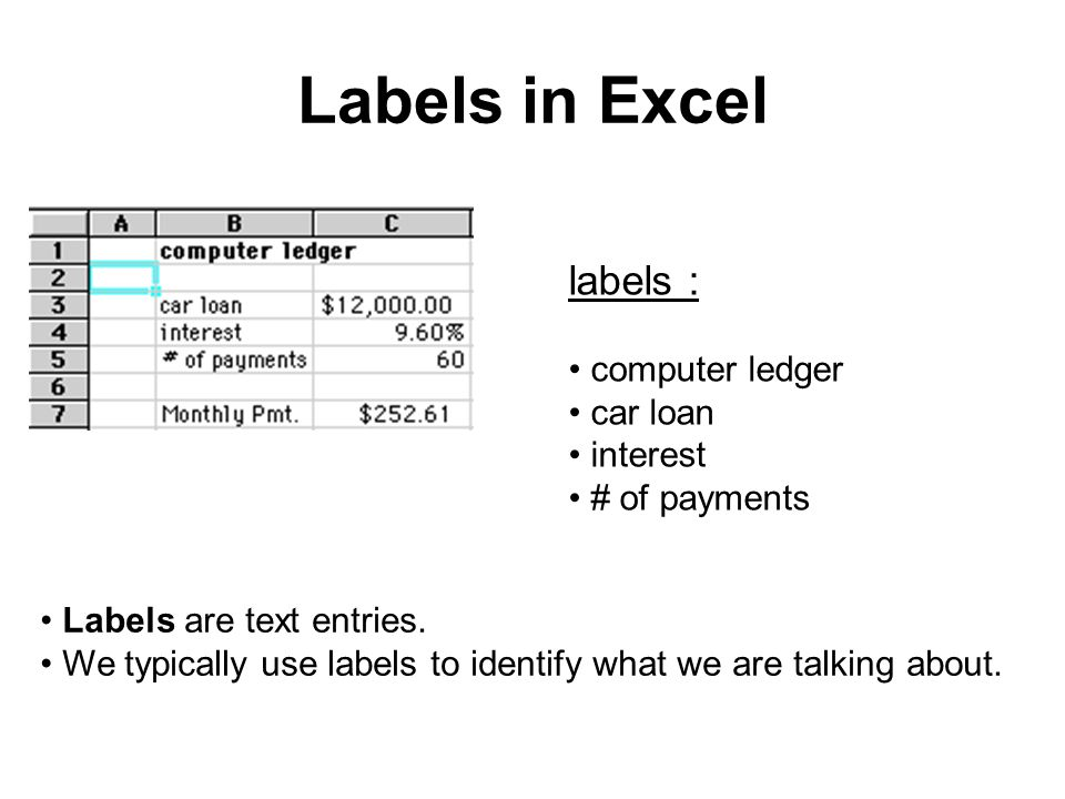Labels in Excel labels : computer ledger car loan interest