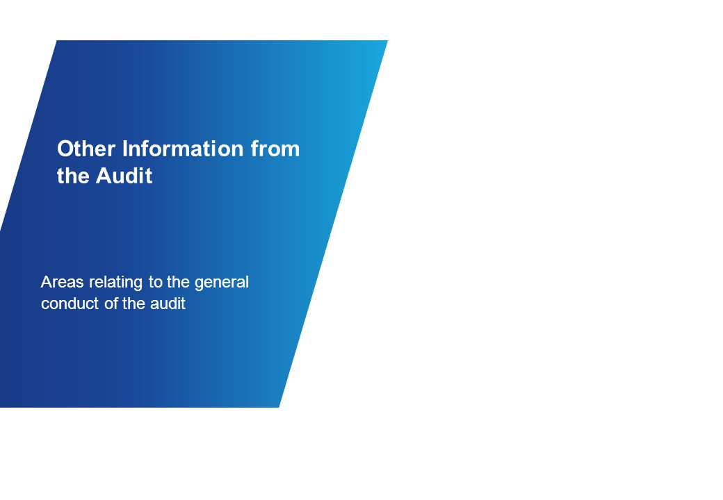 Summary of Audit Status of the Audit