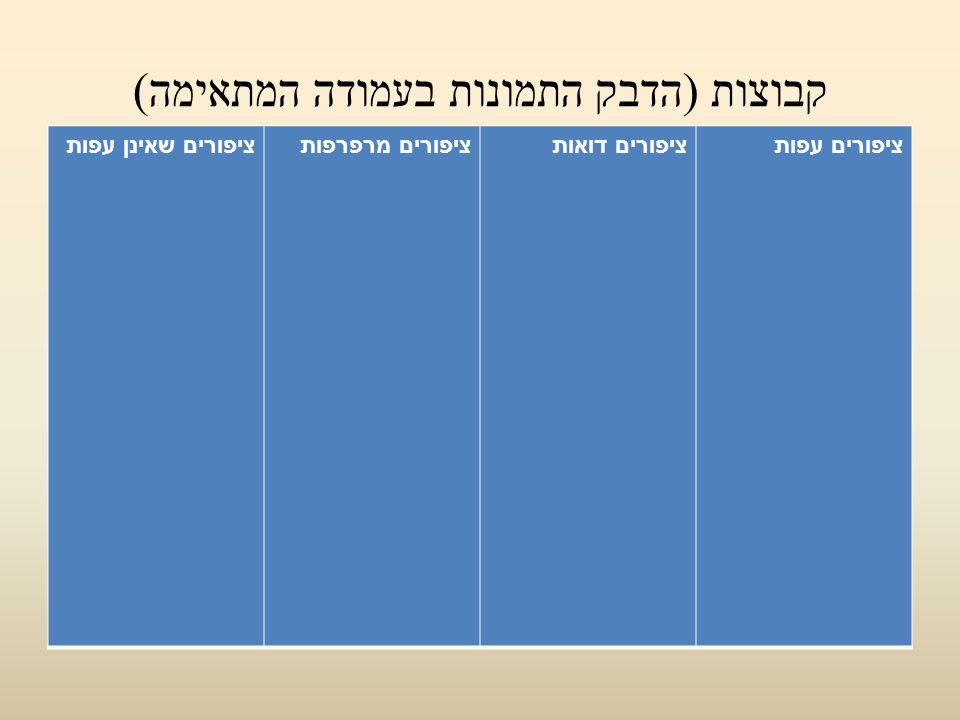 קבוצות (הדבק התמונות בעמודה המתאימה)