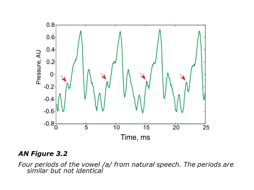 AN Figure 3.2 Four periods of the vowel /a/ from natural speech.