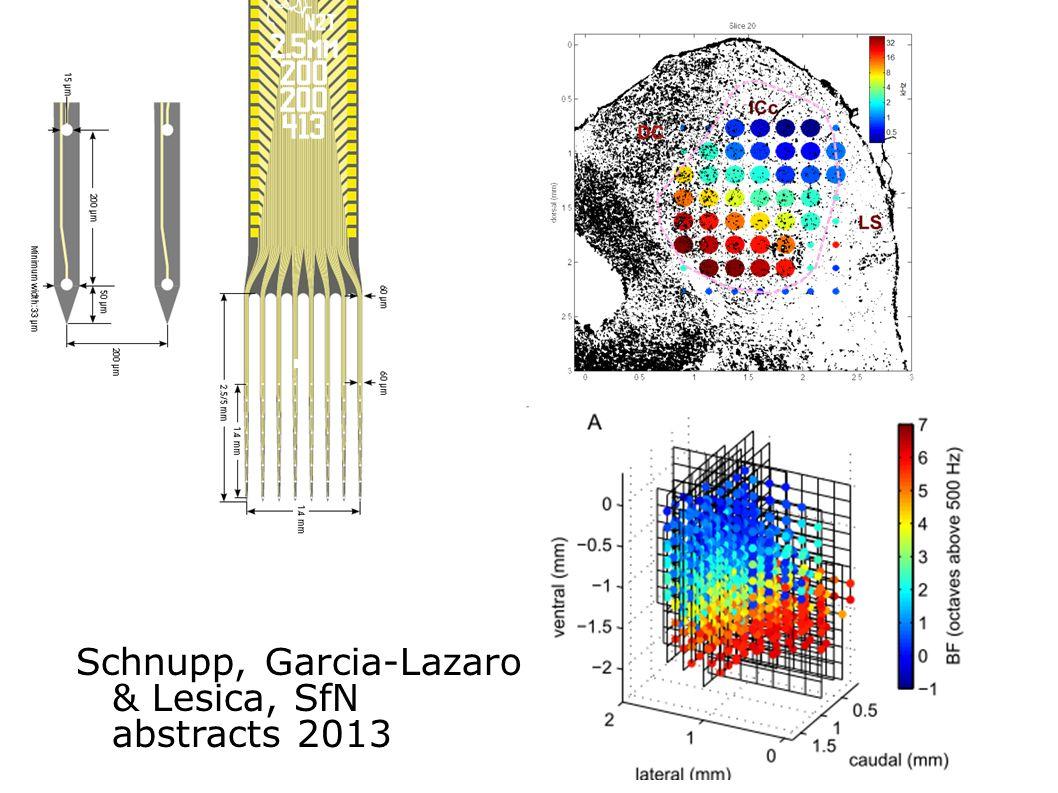 Schnupp, Garcia-Lazaro & Lesica, SfN abstracts 2013