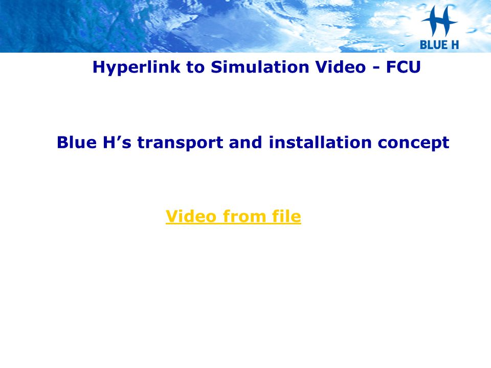 Hyperlink to Simulation Video - FCU