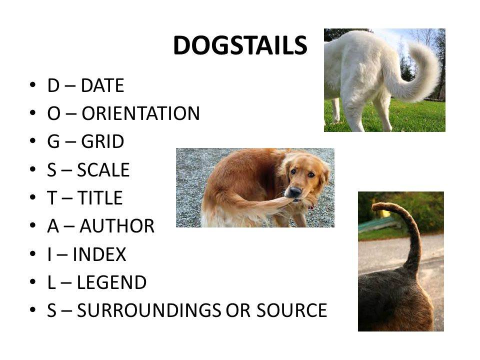 DOGSTAILS D – DATE O – ORIENTATION G – GRID S – SCALE T – TITLE