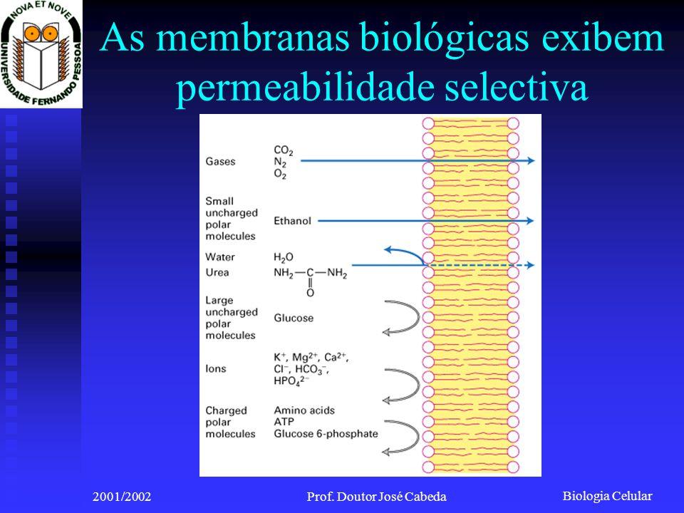 As membranas biológicas exibem permeabilidade selectiva