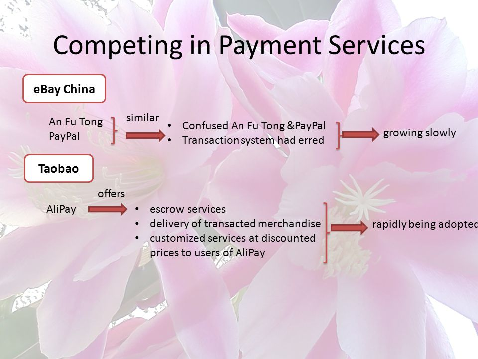 Competing in Payment Services