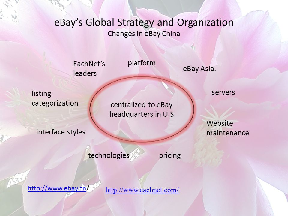 eBay's Global Strategy and Organization Changes in eBay China
