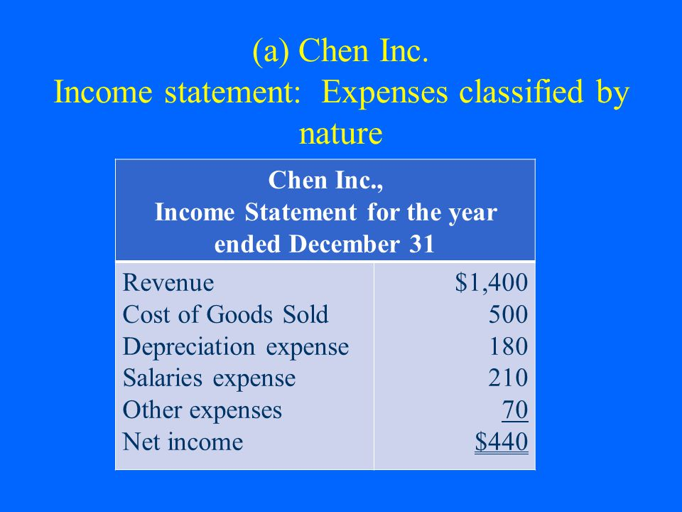 (a) Chen Inc. Income statement: Expenses classified by nature