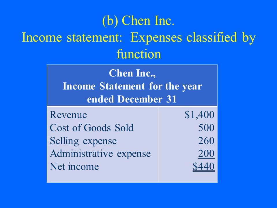 (b) Chen Inc. Income statement: Expenses classified by function