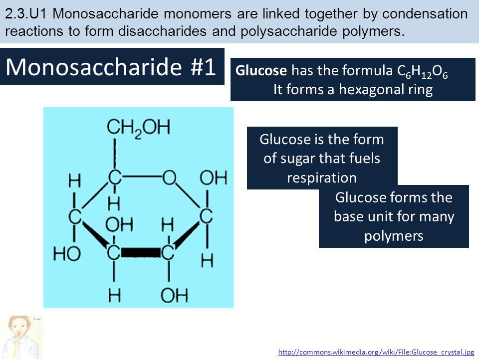 Monosaccharide #1 Glucose has the formula C6H12O6