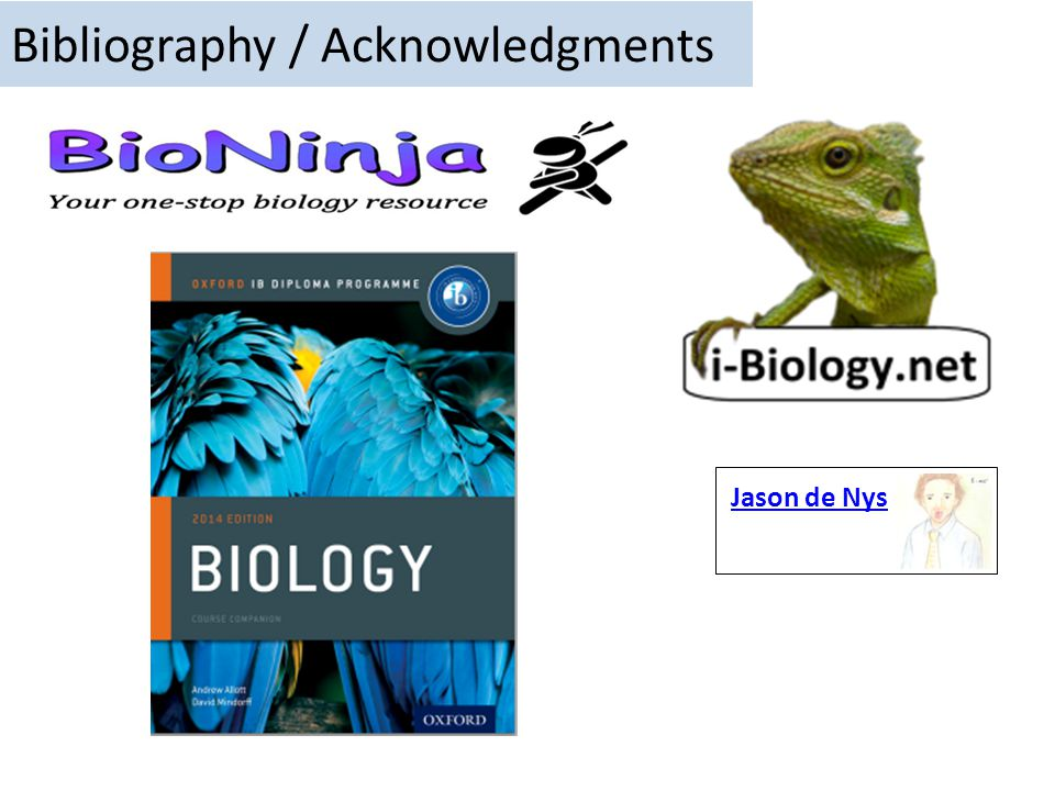 Bibliography / Acknowledgments
