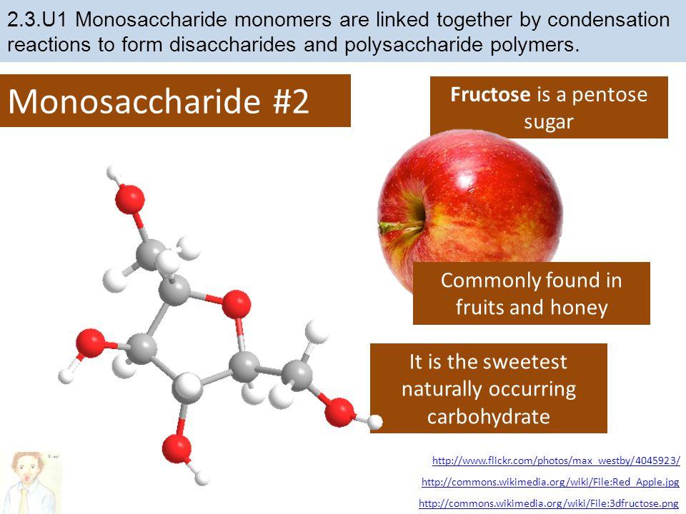 Monosaccharide #2 Fructose is a pentose sugar