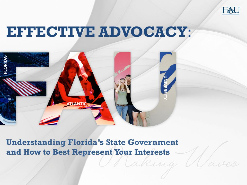 EFFECTIVE ADVOCACY: Understanding Florida's State Government and How to Best Represent Your Interests.