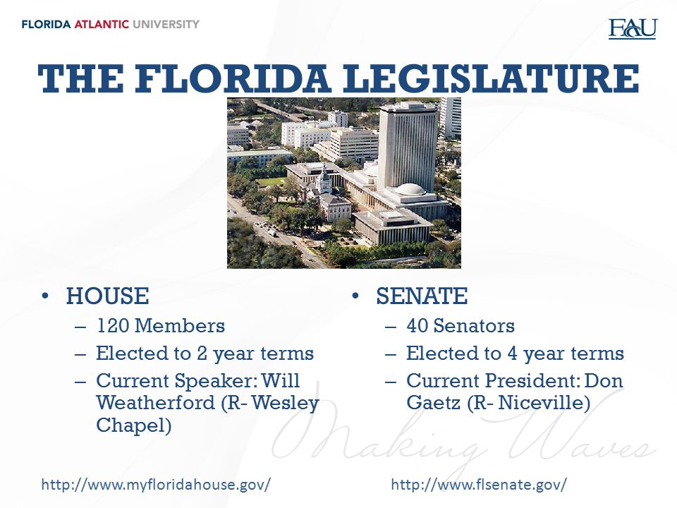 THE FLORIDA LEGISLATURE