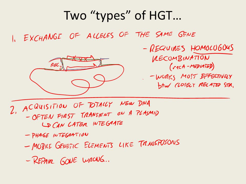 Two types of HGT… Transformation Transduction Conjugation