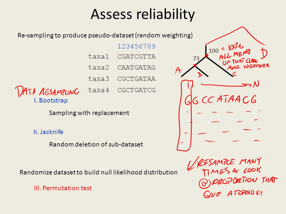 Assess reliability 5. Assess Reliability