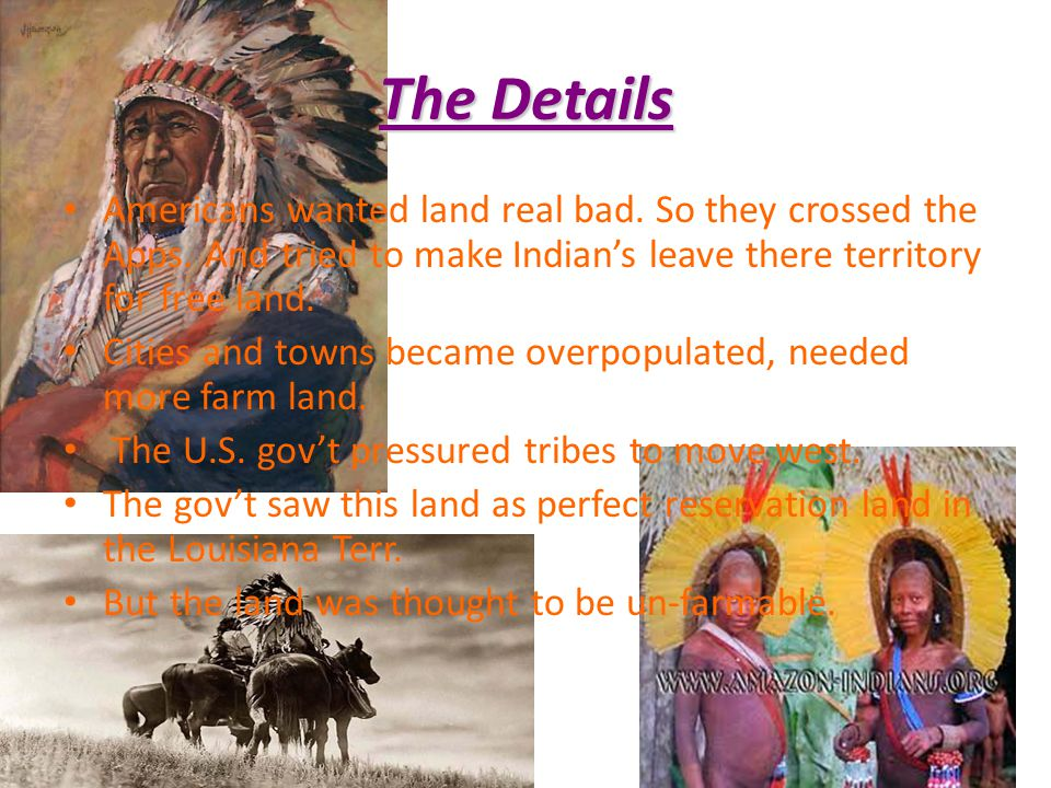 The Details Americans wanted land real bad. So they crossed the Apps. And tried to make Indian's leave there territory for free land.
