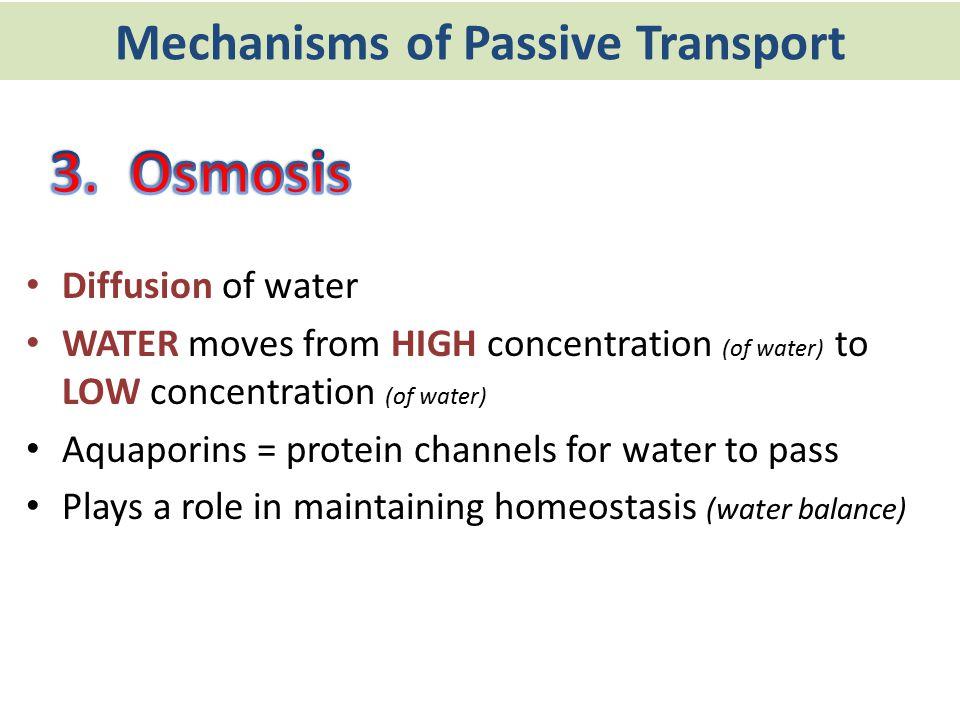 Mechanisms of Passive Transport