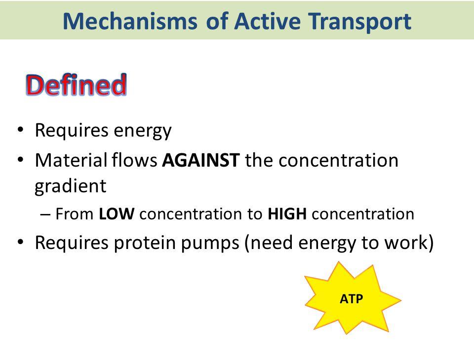 Mechanisms of Active Transport