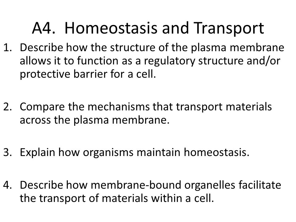 A4. Homeostasis and Transport