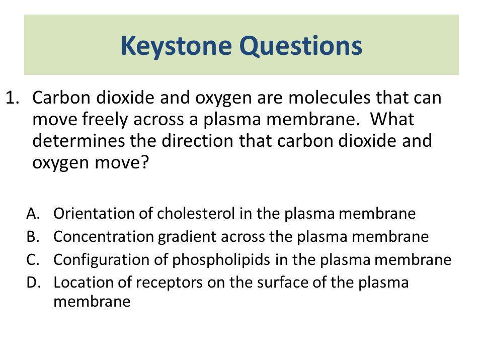 Keystone Questions