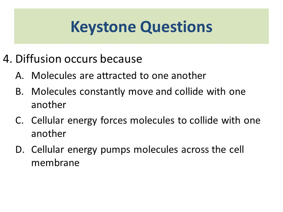 Keystone Questions 4. Diffusion occurs because