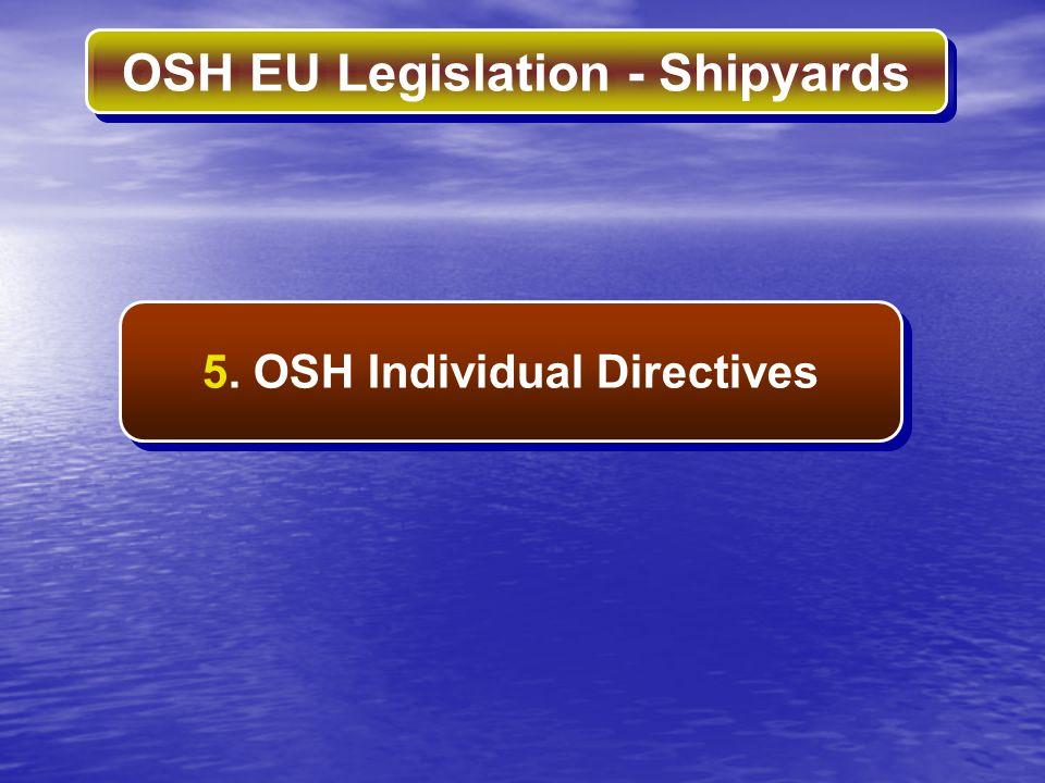 5. OSH Individual Directives