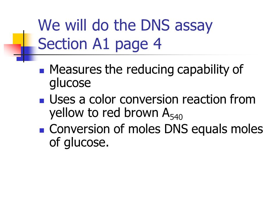 We will do the DNS assay Section A1 page 4