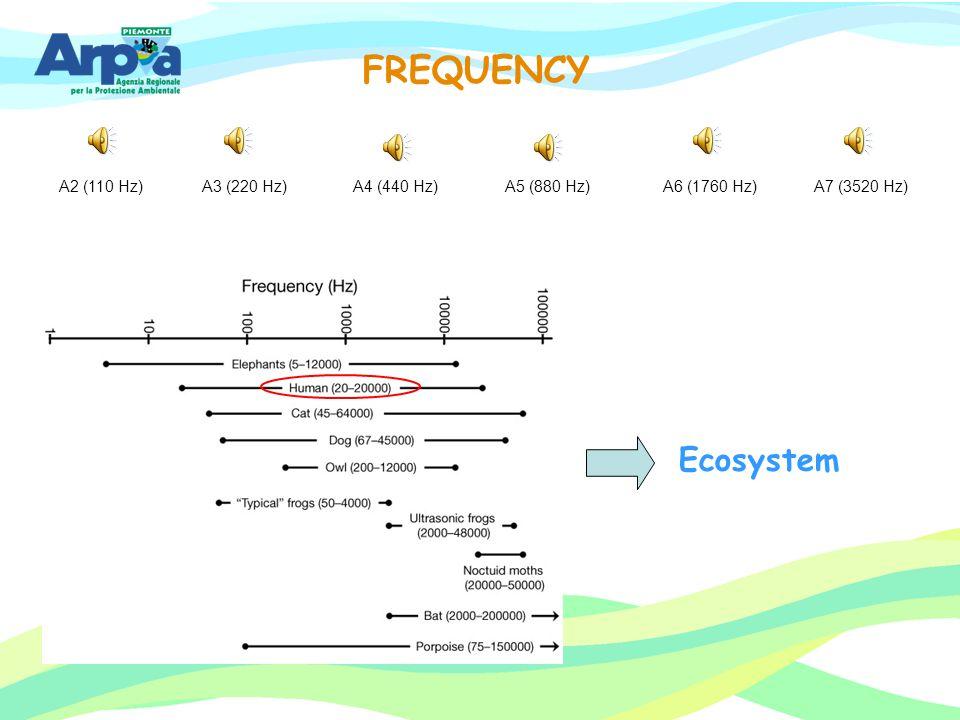 FREQUENCY Ecosystem A2 (110 Hz) A3 (220 Hz) A4 (440 Hz) A5 (880 Hz)