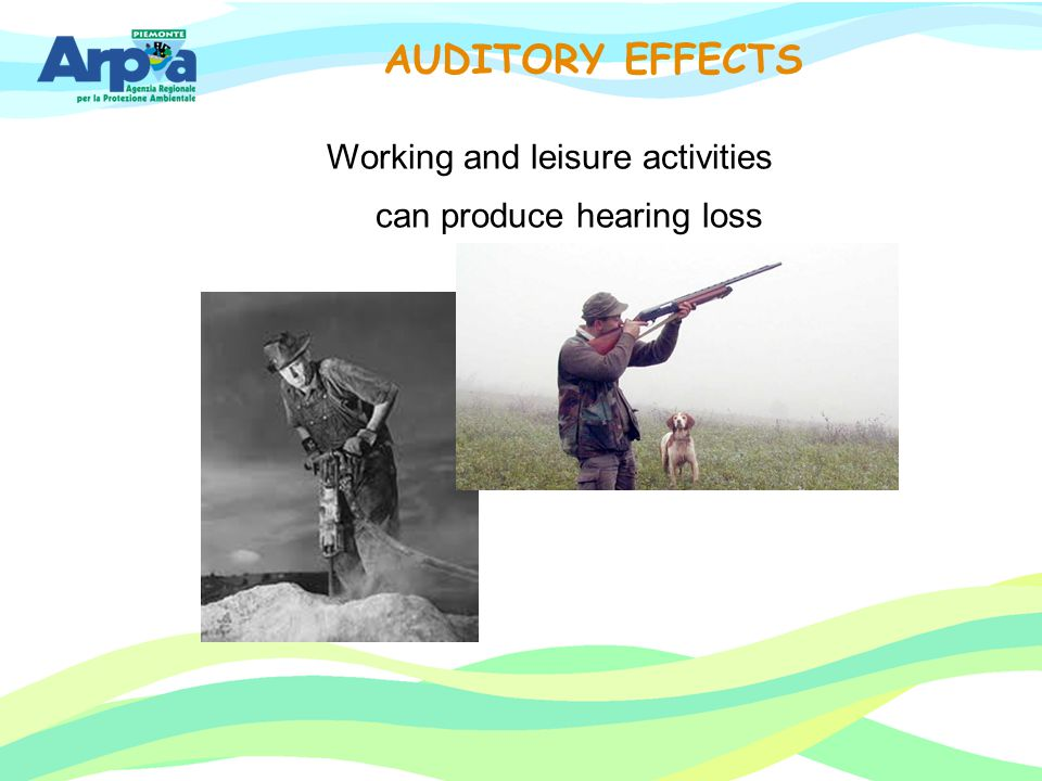 Working and leisure activities can produce hearing loss