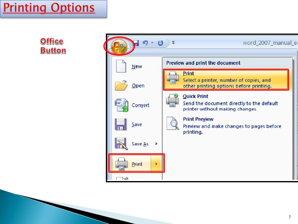 Printing Options Office Button