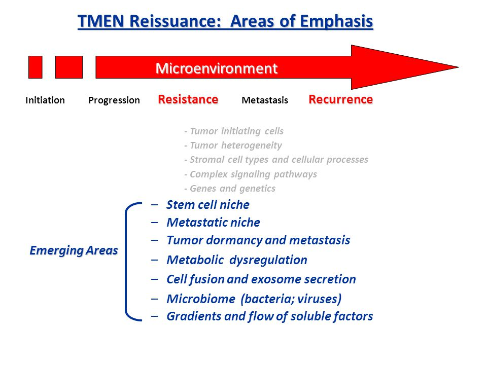 TMEN Reissuance: Areas of Emphasis