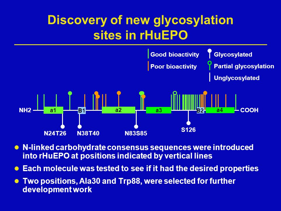 Discovery of new glycosylation sites in rHuEPO