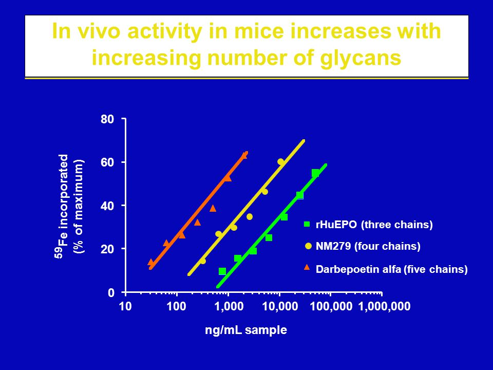 In vivo activity in mice increases with increasing number of glycans