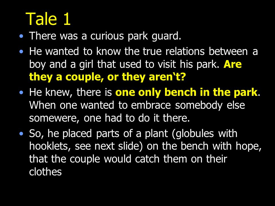 Tale 1 There was a curious park guard.