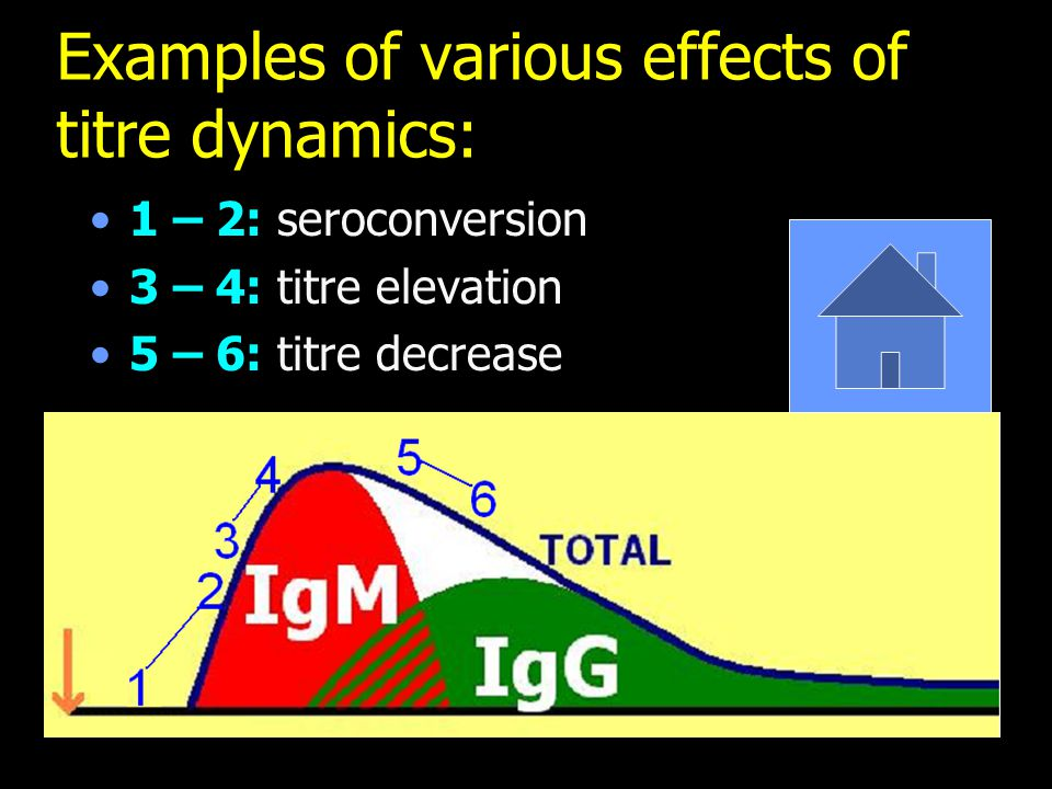 Examples of various effects of titre dynamics:
