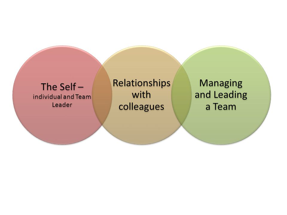 The Self – individual and Team Leader Relationships with colleagues